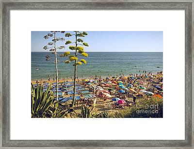 Algarve Beach Framed Print by Carlos Caetano
