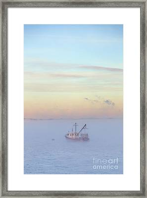 Alight A New Tomorrow Framed Print by Evelina Kremsdorf