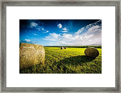 All American Hay Bales Framed Print by David Morefield