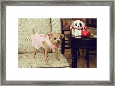 All Dressed Up Framed Print by Laurie Search