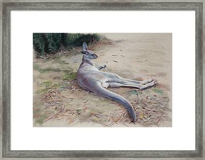 All Hopped Out Framed Print by Christopher Reid