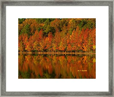All In A  Row Framed Print by Yvette Radcliffe