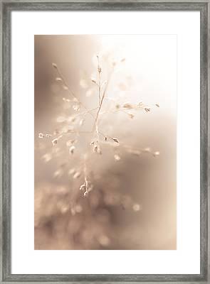 All Tenderness. Grass Art Framed Print by Jenny Rainbow