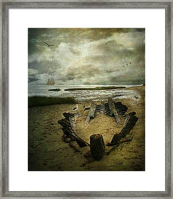 All That Remains Framed Print by Lianne Schneider