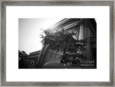 All The World's A Stage Framed Print by Kyle Walker
