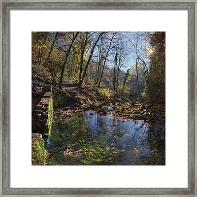 Allondon River Source Framed Print by Patrick Jacquet