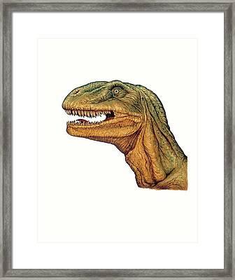 Allosaurus Dinosaur Head Framed Print by Deagostini/uig