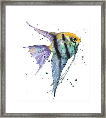 Alluring Angelfish Framed Print by Alison Fennell