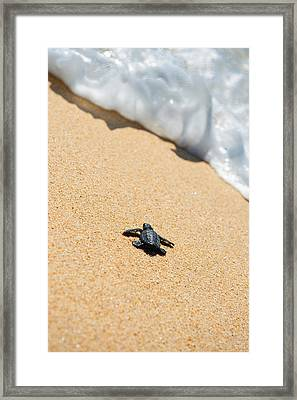 Almost Home Framed Print by Sebastian Musial