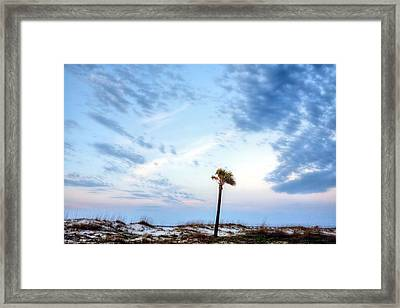 Alone In Gulf Shores Framed Print by JC Findley