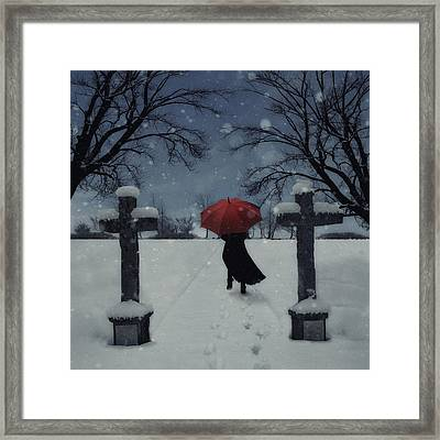 Alone In The Snow Framed Print by Joana Kruse