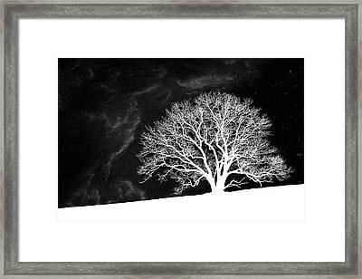 Alone On A Hill Framed Print by Tom Mc Nemar