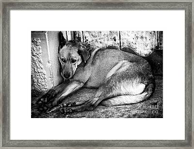 Alone On The Street Framed Print by John Rizzuto