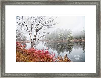 Along 119 Framed Print by Sue OConnor