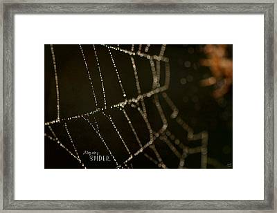 Along Came A Spider Framed Print by Lisa Knechtel
