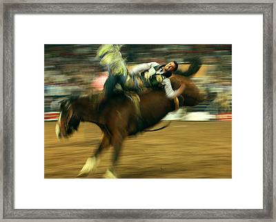 Along For The Ride Framed Print by Mike Flynn