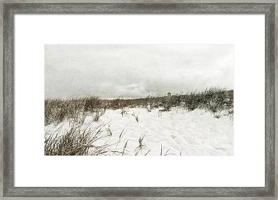 Along The Cape Cod National Seashore Framed Print by Michelle Wiarda
