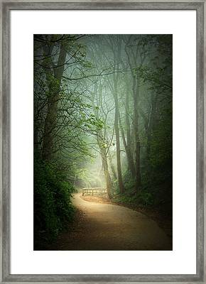 Along The Path Framed Print by Svetlana Sewell