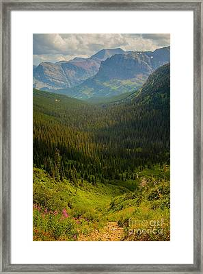 Along The Path To Iceburg Lake 19 Framed Print by Natural Focal Point Photography