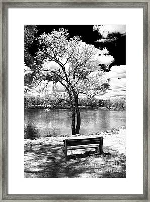 Along The River Framed Print by John Rizzuto
