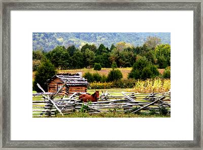 Along The Wilderness Trail Framed Print by Karen Wiles