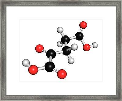 Alpha-ketoglutaric Acid Framed Print by Molekuul
