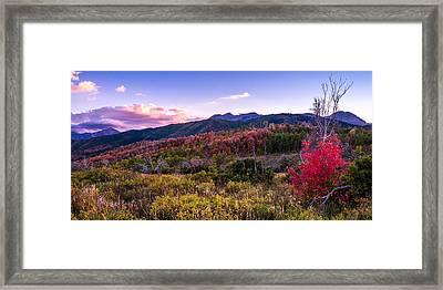 Alpine Fall Framed Print by Chad Dutson