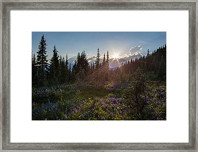 Alpine Meadow Sunrays Framed Print by Mike Reid