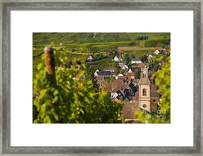 Alsace Morning Framed Print by Brian Jannsen