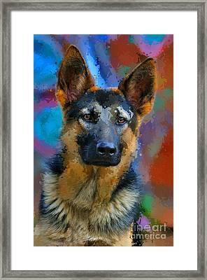 Alsatian Puppy Framed Print by Morris Keyonzo