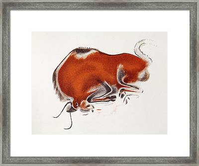 Altamira Bison Cave Painting Framed Print by Paul D Stewart