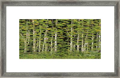 Altered Reflections Framed Print by Howard Ferrier