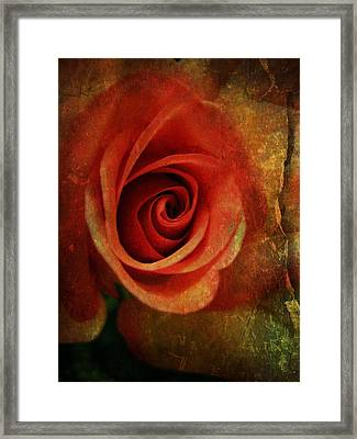 Always Be My Dream Framed Print by Shirley Sirois