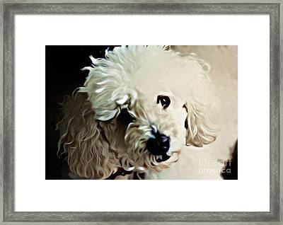 Always Remembered Framed Print by John Malone