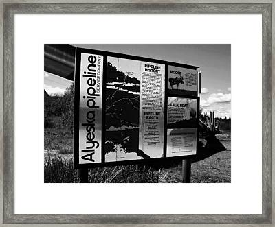 Alyeska Pipeline Framed Print by Juergen Weiss