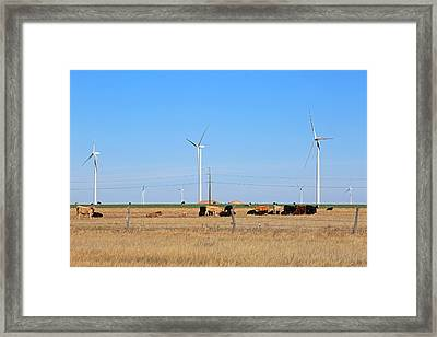 Amarillo By Morning Framed Print by Donna Kennedy