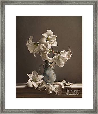 Amaryllis In A French Chocolate Pot Framed Print by Larry Preston