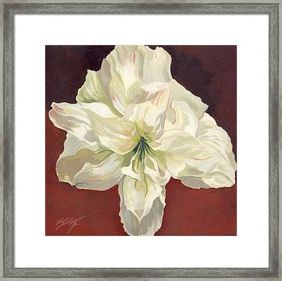 Amaryllis With Red Framed Print by Alfred Ng