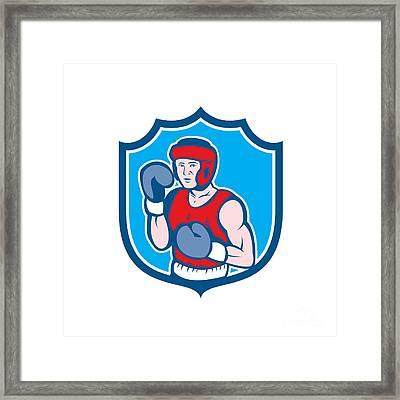 Amateur Boxer Stance Shield Cartoon Framed Print by Aloysius Patrimonio