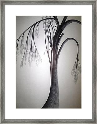 Amazing Dazzling Nature Framed Print by Giuseppe Epifani