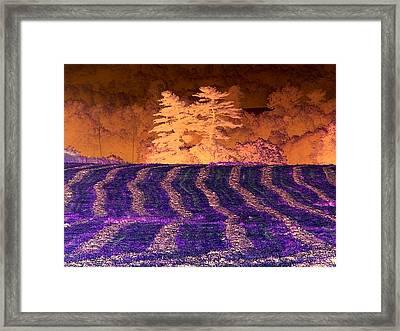Amazing Summer Landscape - Negative Art - Reverse Imaging Framed Print by James Scott Preston