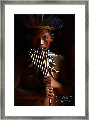 Music In The Amazon South America 1 Framed Print by Bob Christopher