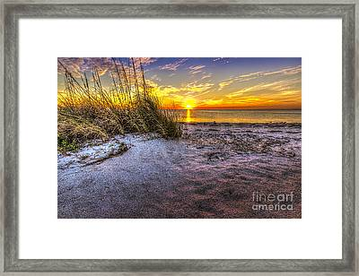 Ambience Of The Gulf Framed Print by Marvin Spates