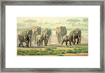 Amboseli Promenade Framed Print by Paul Krapf