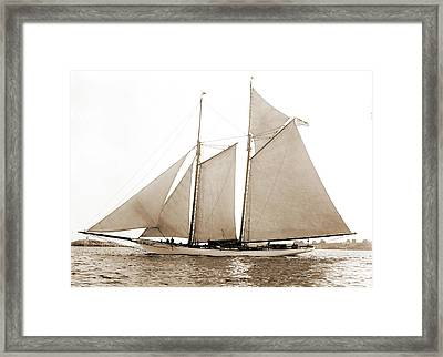 America, America Schooner, Yachts Framed Print by Litz Collection