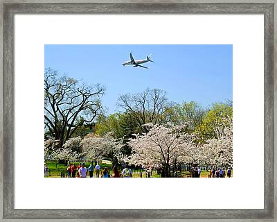 American Airlines Framed Print by Jost Houk