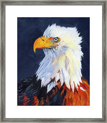 American Bald Eagle Framed Print by Mike Lester