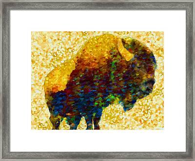 American Bison Framed Print by Jack Zulli