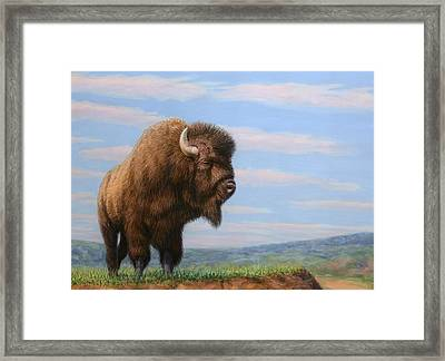 American Bison Framed Print by James W Johnson