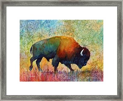 American Buffalo 4 Framed Print by Hailey E Herrera